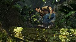Uncharted Golen Abyss (4)