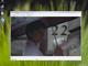 Vlc media player 0 8 4 windows vista