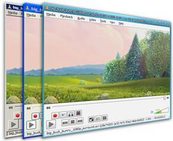 VLC media player 1.1