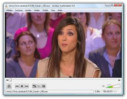 VLC Media Player screen2