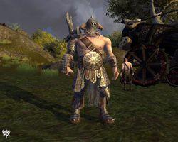 Warhammer Online Age of Reckoning 5