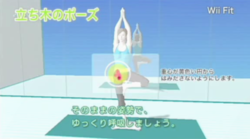 Wii Fit   12