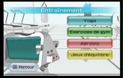 Wii Fit (21)