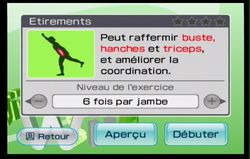 Wii Fit (23)
