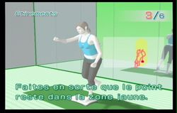 Wii Fit (28)