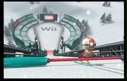 Wii Fit (45)