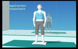 Wii Fit (67)