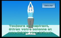 Wii Fit (68)