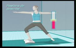 Wii Fit (72)
