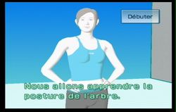 Wii Fit (74)