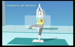 Wii Fit (75)