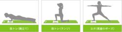 Wii Fit Mat   1