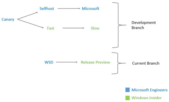 Windows-10-preview-branches