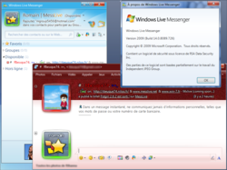 Windows Live Messenger 2009 screen1