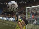 World football climax small