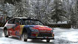 WRC - Image 6
