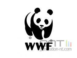 Wwf logo small