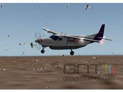 X plane oiseaux small