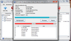 Xtreme Download Manager screen1