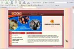 zcodec screenshot (Small)