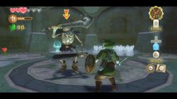 Zelda Skyward Sword (11)