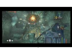 Zelda Twilight Princess Wii - img 14