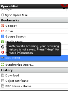 Opera-Mini-4.5-navigation-privee