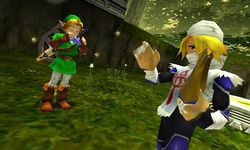The Legend of Zelda - Ocarina of Time 3D (6)