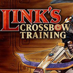 Test Link's Crossbow training
