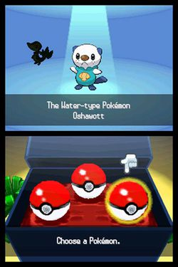 Pokémon Black & White DS (4)