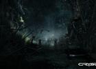 04_swamp_environment_1