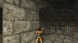 Lara Croft version Web (1)