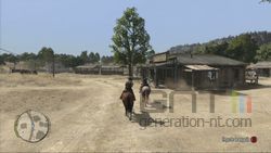 Red Dead Redemption (11)