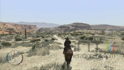 Red Dead Redemption (24)