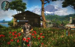Just Cause 2 - Image 61