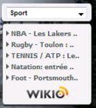 Gadget Actualités Sportives