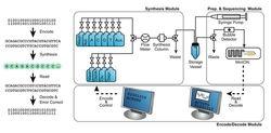 ADN storage