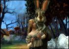 Alice au Pays des Merveilles (5)