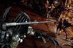 Aliens vs Predator - Image 27