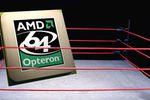 AMD sur un ring