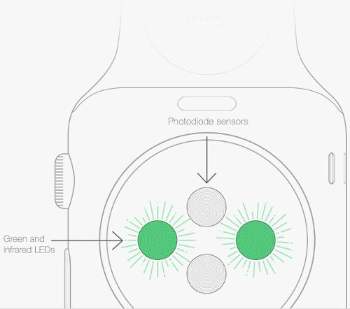 Apple-Watch-capteurs