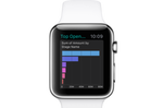 Apple Watch Salesforce 02