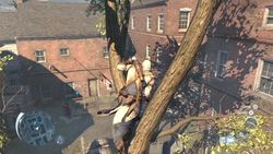 Assassin Creed III - 19