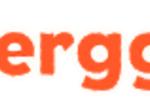 berggi-logo.png