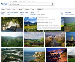 Bing-Images-licences