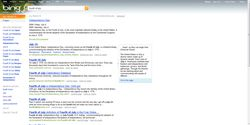 Bing_quickPreviews