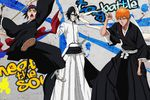Bleach Heat the Soul 5 - Artwork