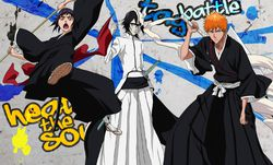 Bleach Heat the Soul 5   Artwork