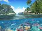 Caribbean Islands : un écran de veille paradisiaque