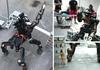 Un robot centaure pour des missions de secours